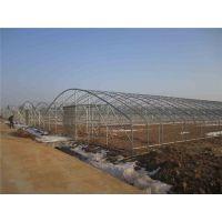 智能温室骨架-富峰农业(在线咨询)-洛阳温室骨架