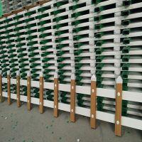 美丽城市小栏杆 小区菜园围栏 塑钢栏杆厂家