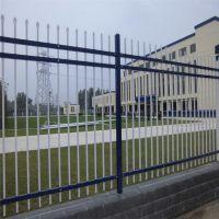 绿化带浸塑护栏 公路防护网厂家 锌钢护栏多少钱一米
