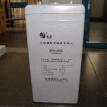 圣阳GFM-1200C蓄电池现货供应 圣阳蓄电池2015年报价
