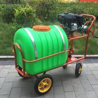 淮安养殖场消毒喷药机价格 高压拉管式喷雾器视频