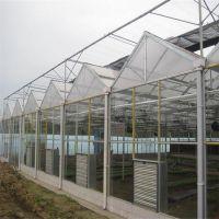 玻璃温室设计承建 玻璃温室大棚图纸 玻璃温室实景图展示
