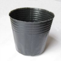 营养钵 营养杯 园艺育苗杯 黑色软塑料花盆 10*10 现货批发