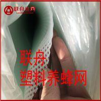 【联舟】河北厂家直销塑料网片 塑料网格片 小孔养蜂网