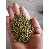 内蒙古 2018赤峰小明绿新绿豆 芽豆 发芽率高 绿豆 各种规格