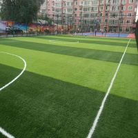 宏跃足球场人造草坪 单丝加筋运动草 8800D 防滑耐磨 质保5-8年