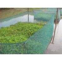 【现货供应】水产养殖网、养殖网箱、黄鳝养殖网、泥鳅养殖网
