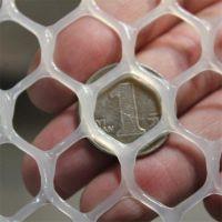 塑料平网生产 阻燃塑料网 家禽养殖网