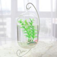 吊挂悬挂玻璃透明多肉植物鱼缸花瓶小玻璃鱼缸创意斗鱼缸迷你鱼缸