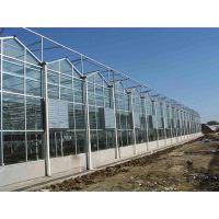 温室大棚玻璃、温室玻璃大棚造价