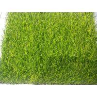 河北省衡水市景县人工草坪价格的单位环保地毯直销