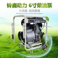 农用高效率6寸柴油机自吸抽水灌溉泵铃鹿
