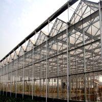 供应上海智能玻璃温室大棚 2019年有补贴的玻璃温室大棚建设价格