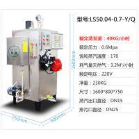 旭恩供应食品厂专用小型燃气节能蒸汽发生器