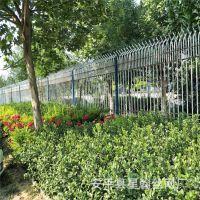 厂家直销新农村建设围墙护栏 街道道路隔离栏杆 市政绿化隔离护栏