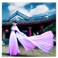 古典汉服舞蹈演出服女古装/舞姬姝姜妹姜甄嬛传惊鸿舞服装水袖舞