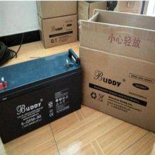 济南宝迪蓄电池6-FMJ100电子器械直流电源医疗设备办公化自动系统大型UPS电源
