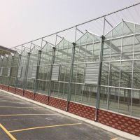 现代玻璃温室大棚建设厂家 定做蔬菜种植现代玻璃温室大棚