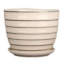 多肉植物花盆多肉花盆绿植物简约个性创意中小号花盆陶瓷器盆栽