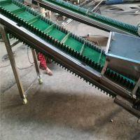 防滑绿色带送料机量身定制 食品包装输送机曲靖