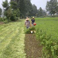 120艾草薄荷收割机 园艺类牧草割晒机