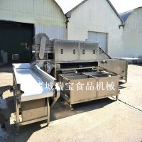 瑞宝制作XJ-8000型洗姜机 黄姜新型清洗机