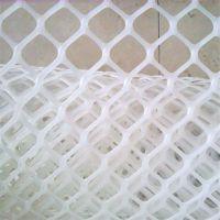 笼底塑料平网 养小鸡用塑料网 水产养殖网