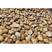 鹤壁天然鹅卵石批发/变压器鹅卵石/水处理鹅卵石厂家批发