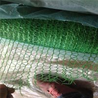 防尘盖土网规格 河北生产盖土网 绿色覆盖网