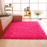 客厅地毯茶几毯沙发前地下铺的垫子阳台满铺长方形卧室地摊床边毯