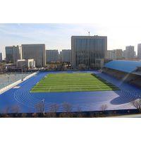 乐陵三中国联足联FIFA认证足球场