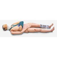 康谊KAY/ZGZ 四肢骨折固定训练指导模型