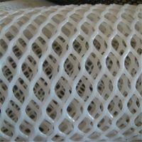 野鸭养殖网 种植养殖网 塑料网脚垫