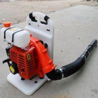 厂家直销小型背负式吹风机 路面吹风机清理机