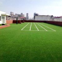 假绿化草坪多少钱一平 幼儿园台阶假草坪 长春仿真草皮