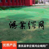 专业生产防尘盖土网4针/800目盖土网;欢迎咨询