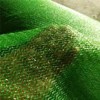 果树苗覆盖网 优质绿化网价格 万泰盖土网生产