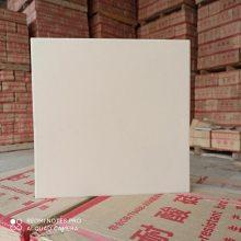 广东耐酸砖,梅州耐酸耐碱地面砖