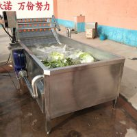 汇康葡萄干清洗机 水果丁清洗机 玉米粒清洗流水线