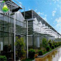 玻璃连栋花房温室 文洛式温室大棚 大棚项目设计建设