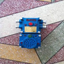 供应声光组合信号器 KXH127声光信号,对讲电铃,声光电铃