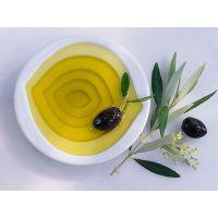 100%纯天然食用杏仁油,高端礼品,厂家河南晶森油脂批量供应