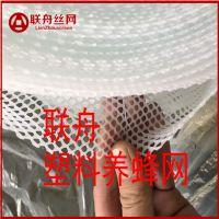 【联舟】供应0.3孔养蜂专用塑料网 养殖塑料平网