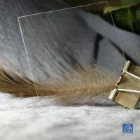 供应日本进口高透、防尘、去静电、韧性好的环保型PET片材厚度为0.35mm