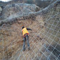 柔性钢丝绳防护网 河北缆瑞主动防护网价格