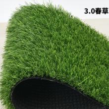 工程围挡草坪 幼儿园跑道人工草坪 足球场人造草坪 市政人工草坪