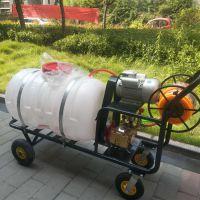 多功能药箱式花卉喷洒机 手推式农作物灭虫喷雾器 澜海机械