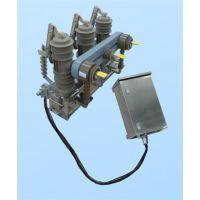提供63A-12/3150ZN真空断路器厂家
