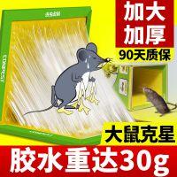 粘鼠板 老鼠贴 驱鼠灭鼠器 捉大老鼠神器 捕鼠灭鼠药