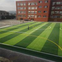 学校的假草坪 假草坪文字 篮球仿真草皮